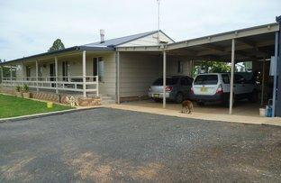 Picture of 6702 Warrumbungles Way, Coonabarabran NSW 2357