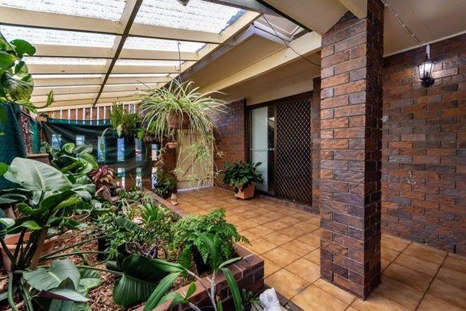 Picture of 17 Kittyhawk Street, BONGAREE QLD 4507