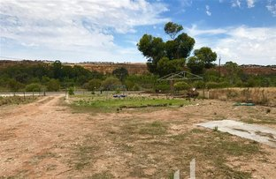 Picture of 665 Cliff View Drive, Wongulla SA 5238