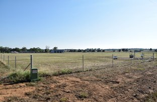 Picture of Lot 6 Walsh's Lane, Grenfell NSW 2810