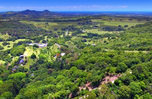 Picture of Lot 1 Wilsons Creek Road, Wilsons Creek NSW 2482