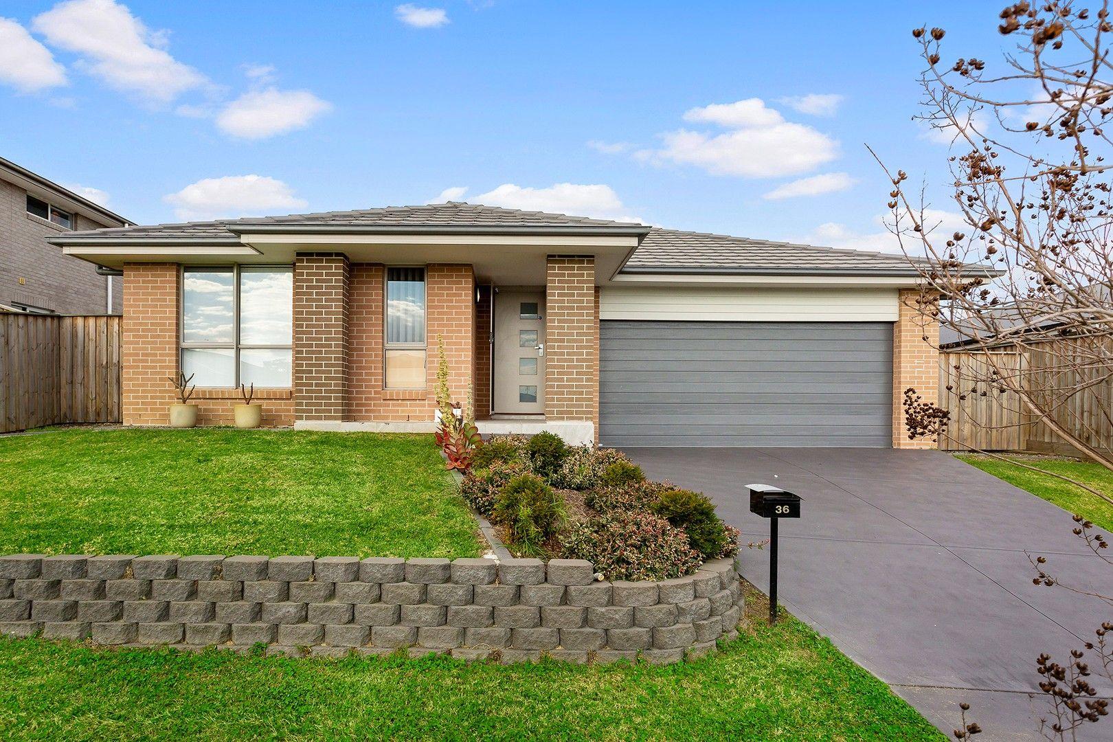 36 Mountain Street, Chisholm NSW 2322, Image 0