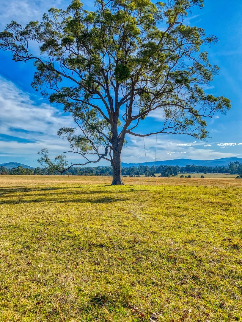 1647 Rollands Plains Road, Rollands Plains NSW 2441, Image 1