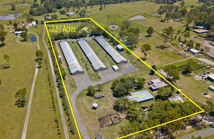Picture of 5025-5037 Mount Lindesay Highway, South Maclean QLD 4280