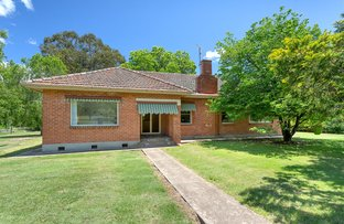 Picture of 3709 Omeo Highway, Eskdale VIC 3701