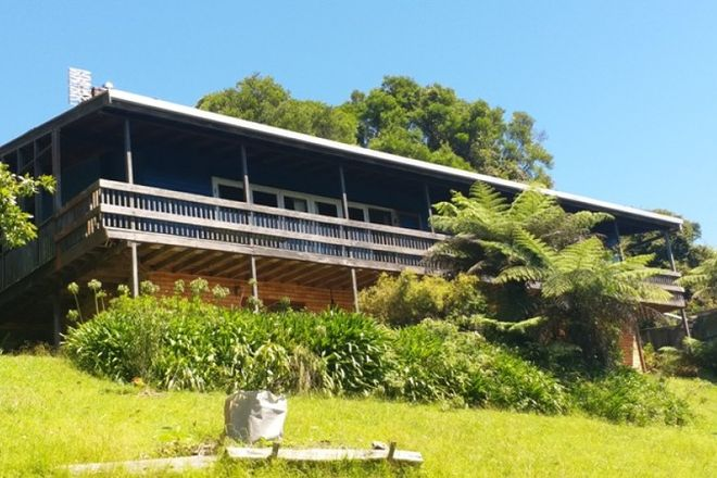 Picture of 521 Muldiva Road, DORRIGO NSW 2453