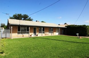Picture of 55 BRIGALOW DRIVE, Moree NSW 2400