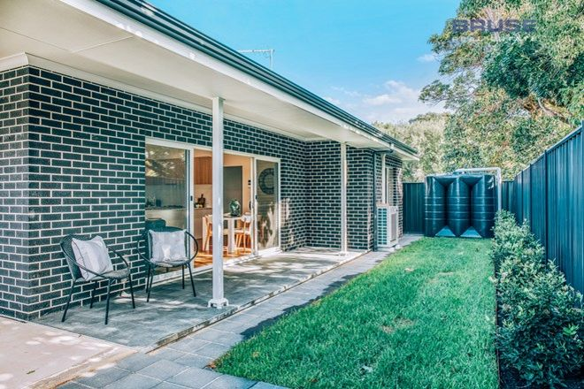 Picture of 8A Lockhart Terrace, EDWARDSTOWN SA 5039