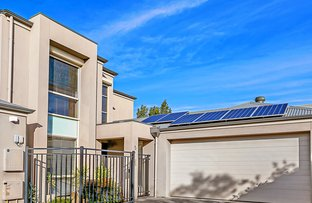 Picture of 8 Belgrave Court, Parkside SA 5063