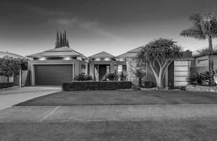 Picture of 7 Colman Drive, Middle Ridge QLD 4350