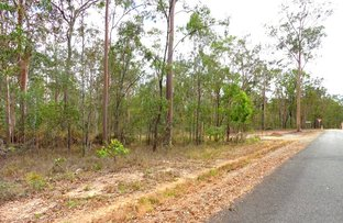 Picture of Lot 10 Cauleys Road, Paterson QLD 4570