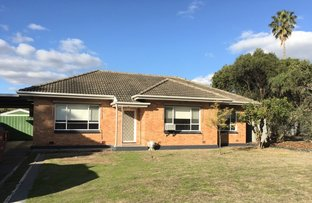 Picture of 15 Speed Ave, North Plympton SA 5037