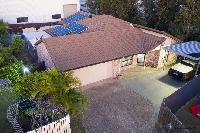 Picture of 85 Brumby Circuit, SUMNER QLD 4074