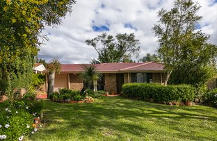 Picture of 16 Northend Cl, Swan View WA 6056