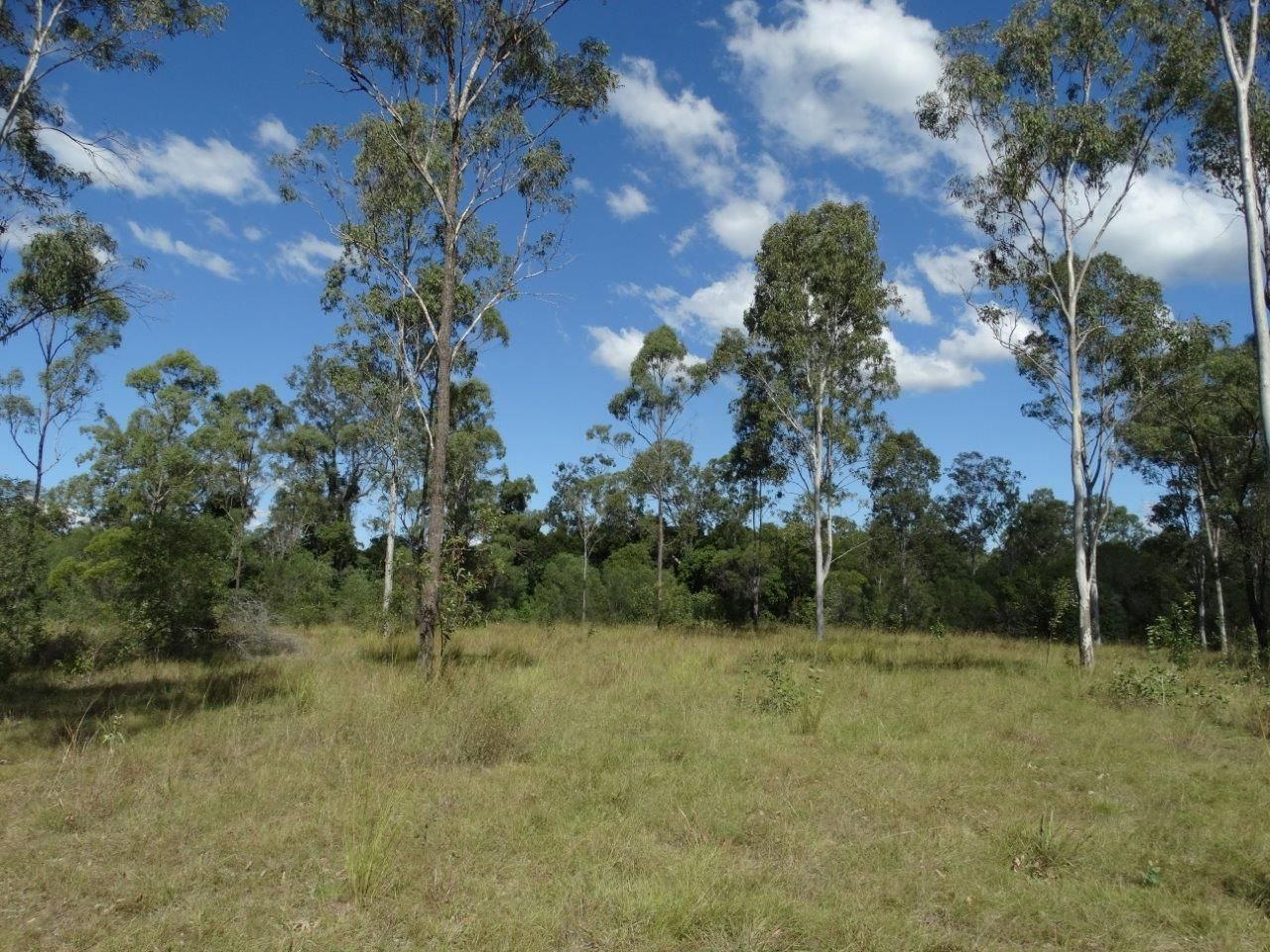 582 Taunton Road, Taunton QLD 4674, Image 2