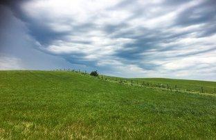Picture of 3070 Corangamite Lake Road, Cundare North VIC 3251