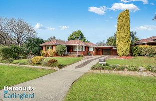 Picture of 4 Anthony street, Carlingford NSW 2118