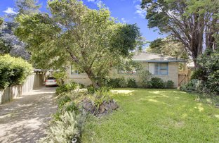 Picture of 13 Jarrah Place, Frenchs Forest NSW 2086