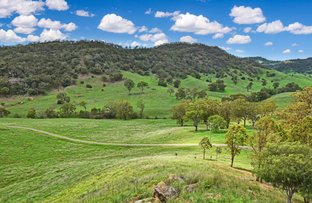 Picture of Datchet 1758, Sandy Creek Road, Mccullys Gap NSW 2333