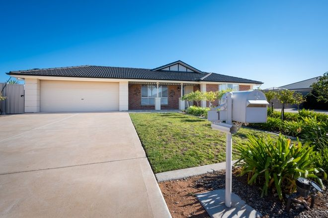 Picture of 1 Busch Street, WHYALLA JENKINS SA 5609