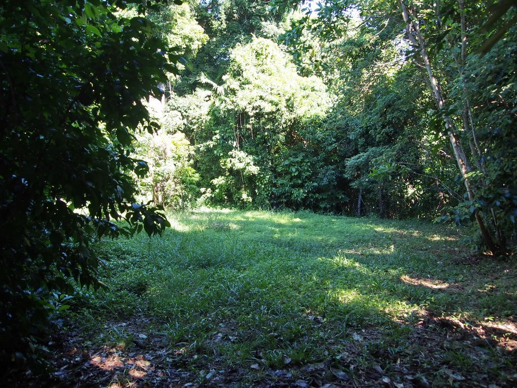 Lot 1 Holt Road, Mission Beach QLD 4852, Image 2