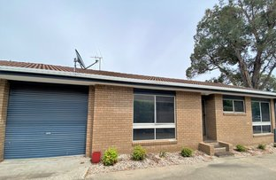 Picture of 3/549 Ebden Street, South Albury NSW 2640