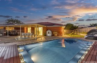 Picture of 18 Windermere Circle, Joondalup WA 6027