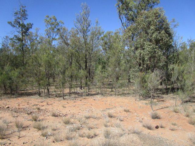 LOT 107 FORESTRY RD WERANGA, Tara QLD 4421, Image 2