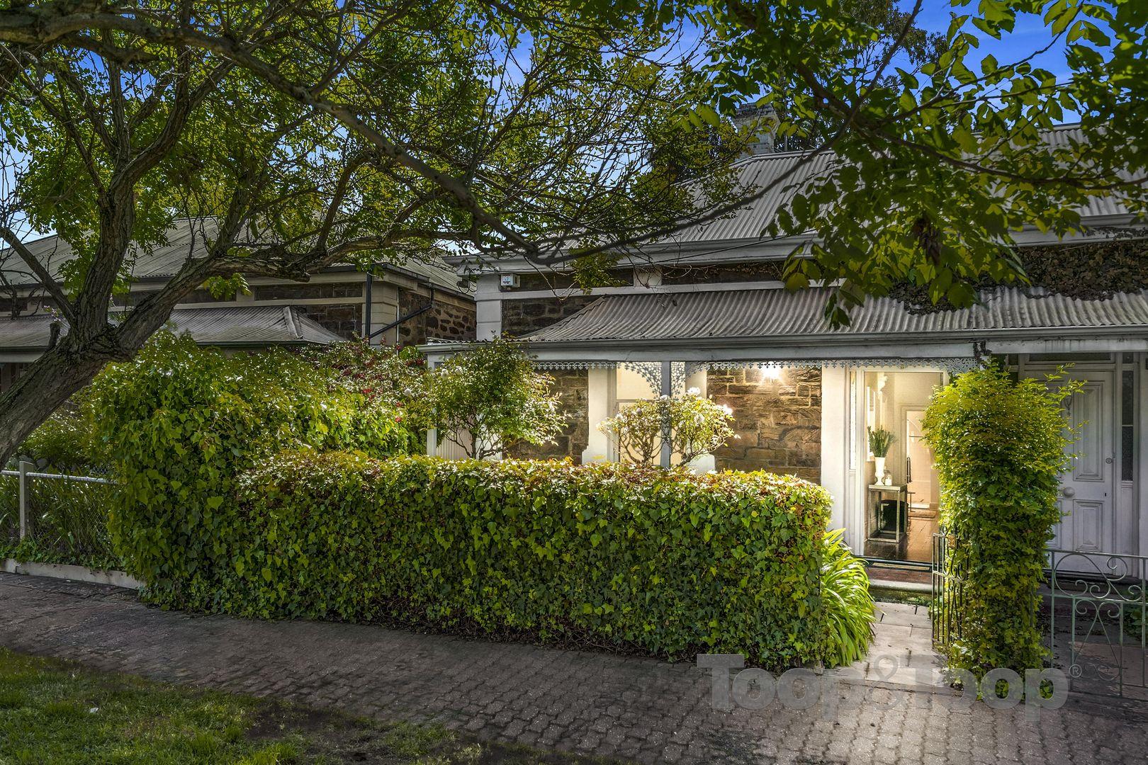 318 Halifax Street, Adelaide SA 5000, Image 0