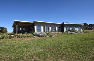 Picture of 215 Spring Terrace Road, Spring Terrace via, Orange NSW 2800