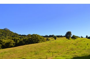 Picture of 3500 Wingham Road, Comboyne NSW 2429