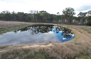 Picture of Lot 1 Mount Hutton Road, Broadwater QLD 4380