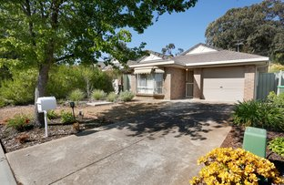 Picture of 11 Hardy Court, Tanunda SA 5352