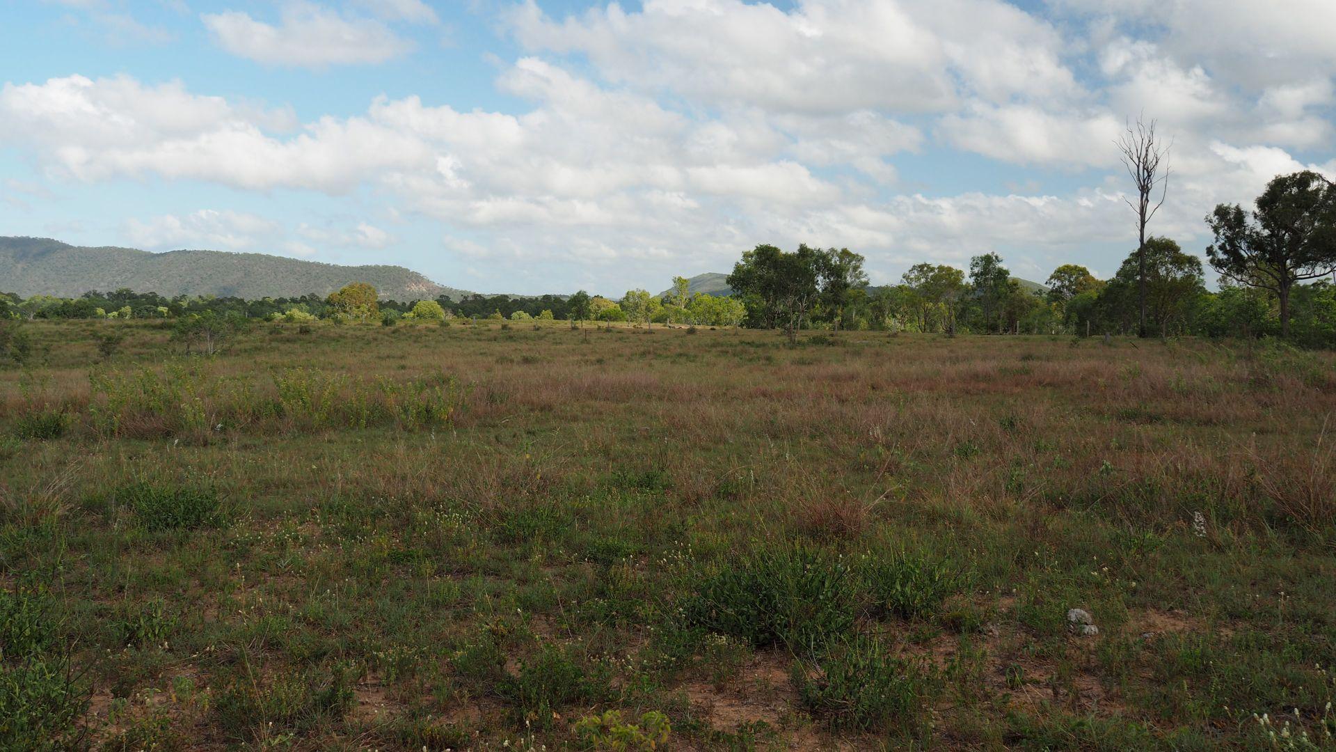 370 Wattlebank Rd, Canoona QLD 4702, Image 2