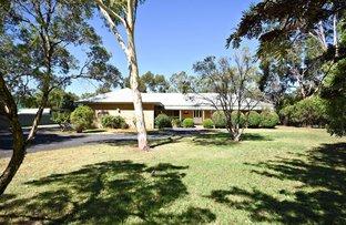 Picture of 44 WARREN ROAD, Narromine NSW 2821