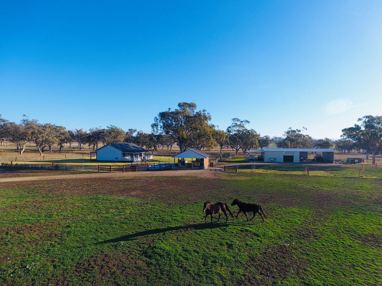 """1452 """"Yarran"""" Merriwa Road, Willow Tree NSW 2339, Image 1"""