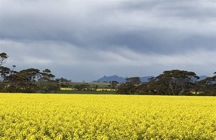 Picture of Gnowangerup WA 6335