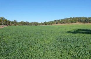Picture of 52 Davis, Windera QLD 4605
