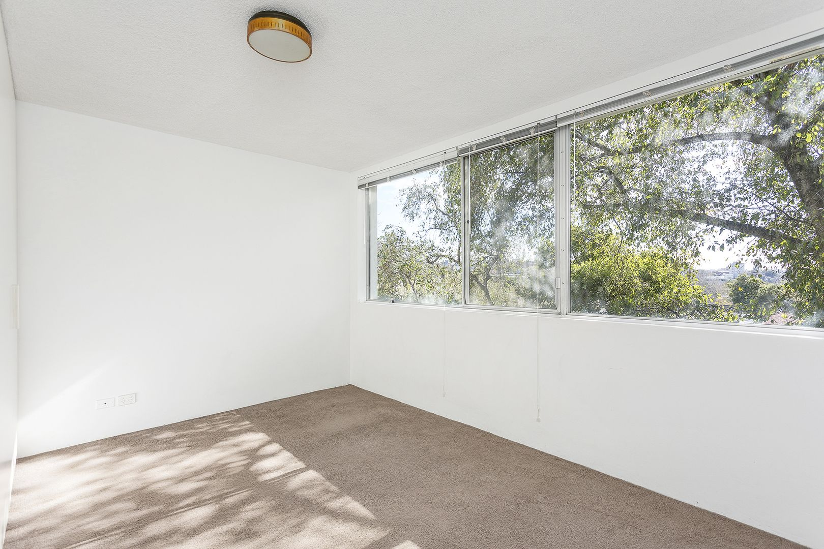 284 Glenmore Road, Paddington NSW 2021, Image 2