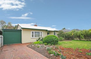 Picture of 59 Scottish Avenue, Clovelly Park SA 5042