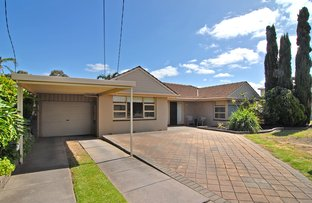 Picture of 7 Andrea Avenue, Newton SA 5074