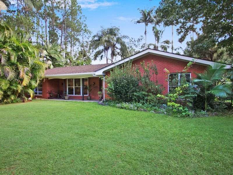 134 Mt Warning Rd, Uki NSW 2484, Image 2