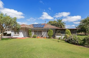 Picture of 40 Westbourne Street, Langhorne Creek SA 5255