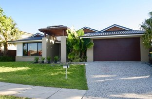 Picture of 44 William Bvd, Pimpama QLD 4209
