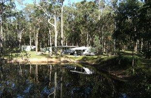 Picture of Blackbutt QLD 4306