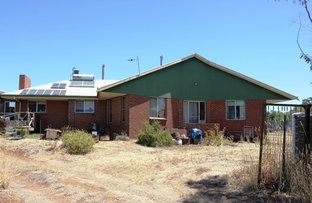 Picture of 53 Williamson Street, Dookie VIC 3646