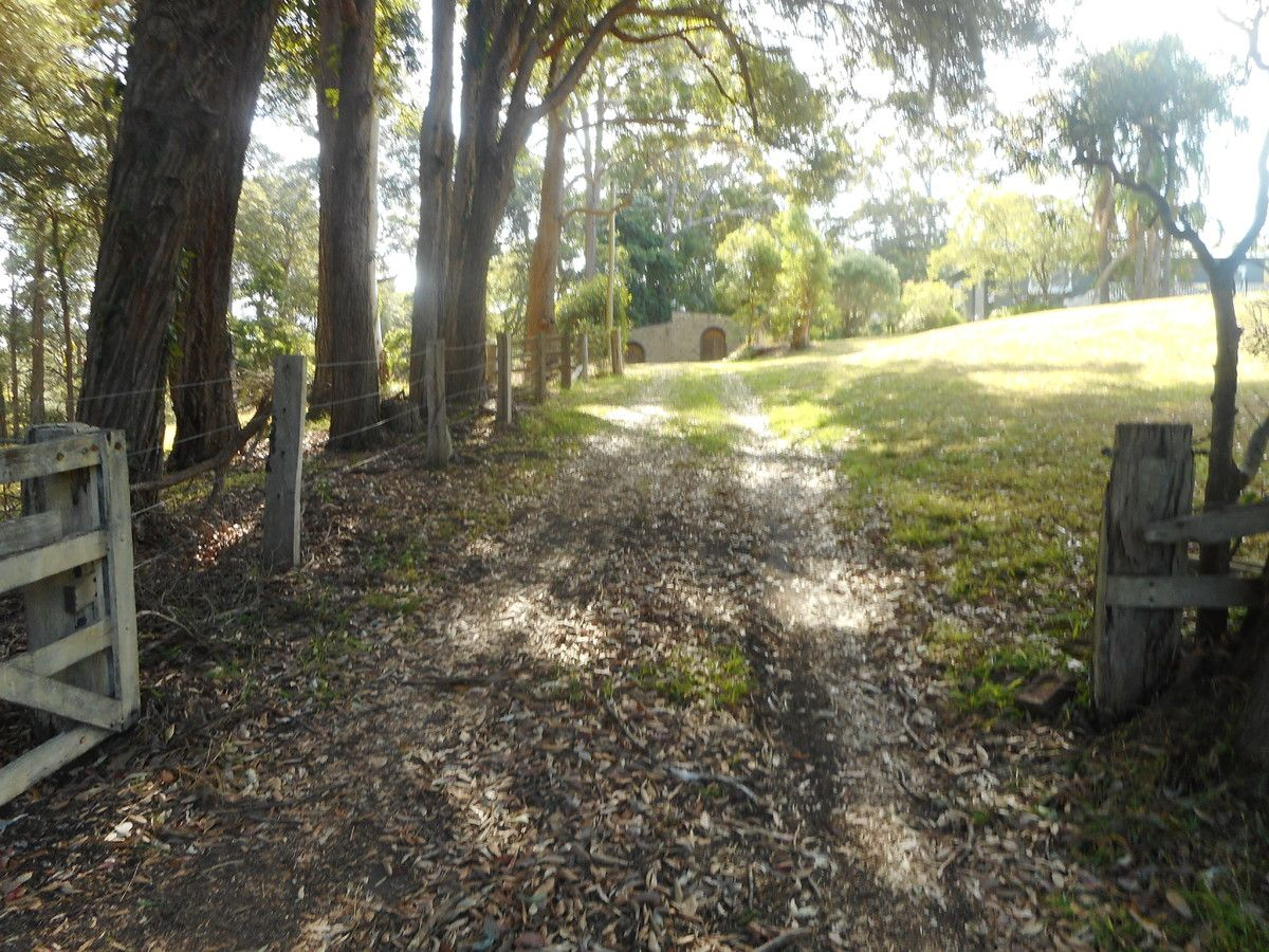 2/113 Picketts Valley Road, Picketts Valley NSW 2251, Image 0