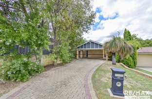 Picture of 46 Quinault Loop, Joondalup WA 6027