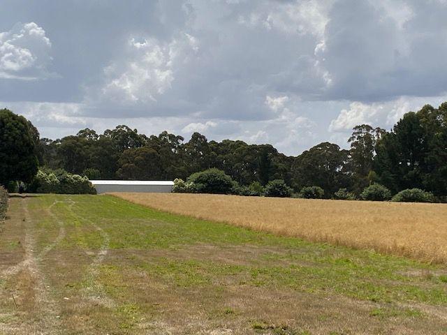 1419 Daylesford-Trentham Road, Lyonville VIC 3461, Image 0