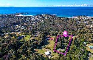 55 Murramarang Road, Bawley Point NSW 2539